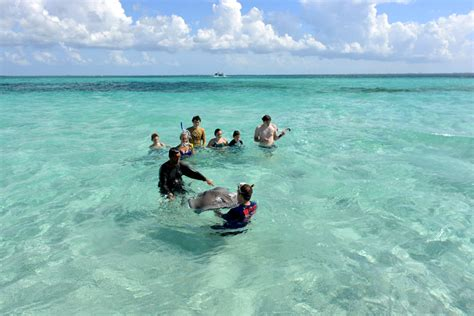 grand cayman catamaran excursion grand cayman stingray city sandbar catamaran sailing