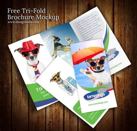 free tri fold brochure mockup psd template free vector in