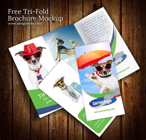 free tri fold brochure template psd free tri fold brochure mockup psd template free vector in
