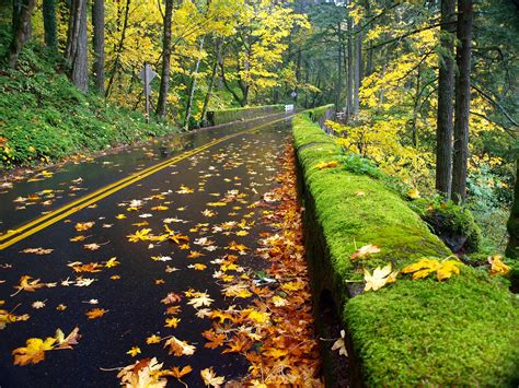 scenic highways top 10 scenic drives in the united states