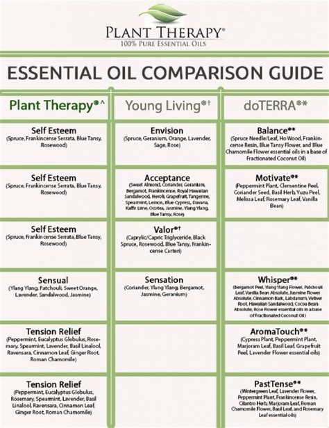 plant therapy essential oils find 25 best plant therapy essential oils ideas on