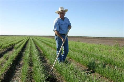 farmer s canadian farmers invest thousands of dollars on security