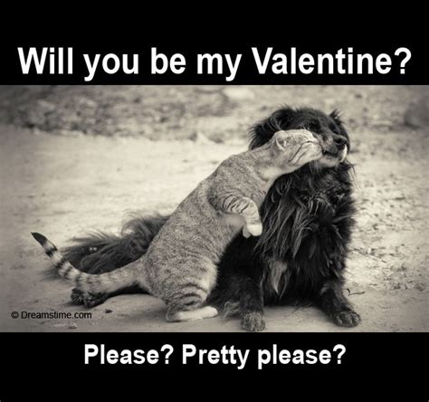 Will You Be My Valentine Meme - would you be my valentine meme quotes