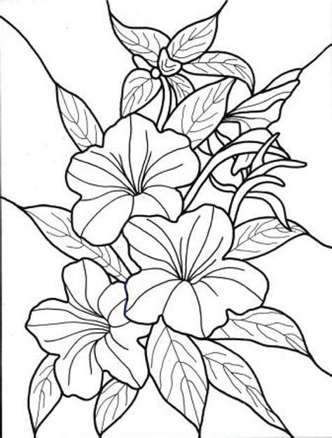 imagenes bonitas para colorear de flores dibujos de flores exoticas para colorear