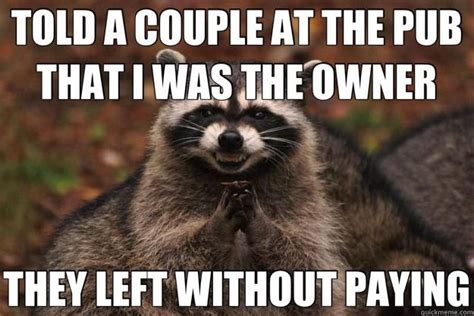 Racoon Meme - it s raccoon time i can has cheezburger funny cats