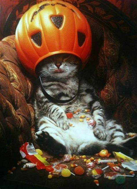 Imagenes Chidas Halloween | imagenes de halloween con frases chidas poemas para las
