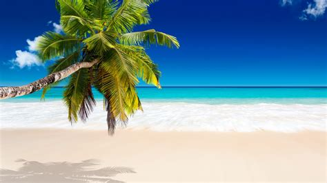 wallpaper for desktop hd beach tropical beach wallpapers pictures images