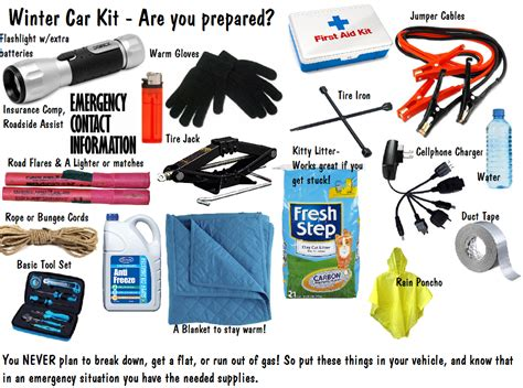 Philosophy Winter Weather Survival Kit by Safety Winter Hazards