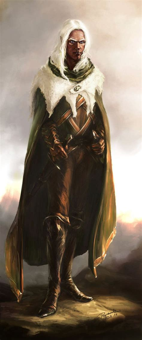 libro the drizzt 012 forgotten m 225 s de 25 ideas en tendencia sobre elfo oscuro en dnd characters moon elf y where