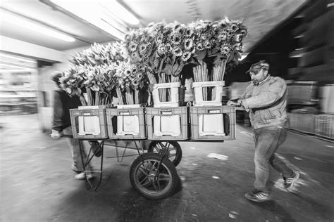 mercato dei fiori trionfale mercato dei fiori trionfale gallery parioli