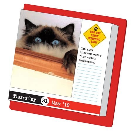 bad cat page a day calendar 0761193715 bad cat page a day calendar 2018 workman publishing 9780761193715 books amazon ca