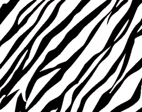 Animal Print Templates by Zebra Print Background Free Images At Clker Vector