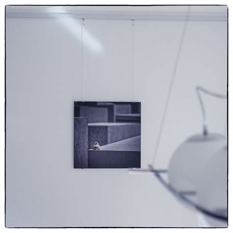 Wandbilder Alu Dibond by Produkttest Cewe Alu Dibond Direktdruck Lichttraeumer
