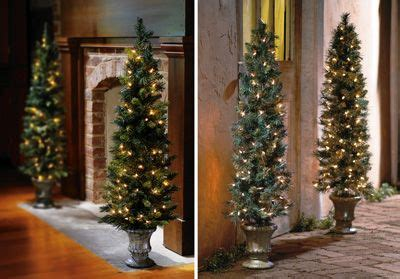 pre lit christmas topiary trees pre lit 42 quot tree topiary decorating for trees