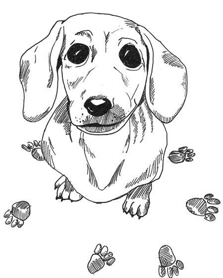 wiener dog coloring page dachshund printable coloring pages doxie heaven