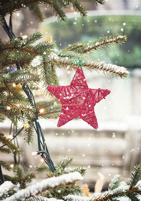 awesome christmas tree ornaments for outdoor ideas
