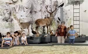 größte stadt der welt fläche naturmuseum st gallen ausstellung