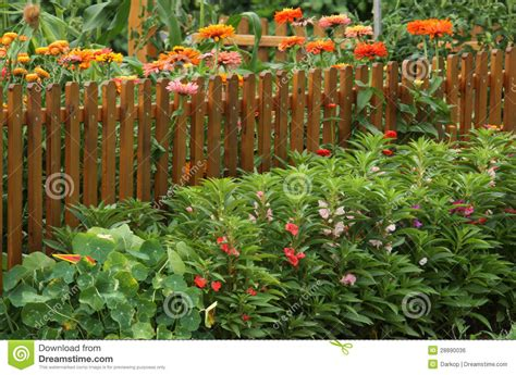 Vegetable Garden With Flowers Border Stock Photo Image Flowers For Vegetable Garden