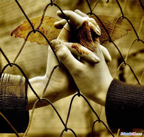images of love hands moments of love happiness wallpapers