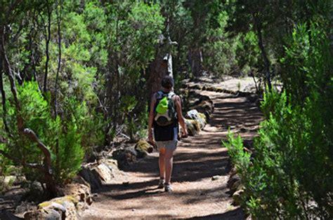 fertility walk hiking gear for the two week wait volume 2 books la orotava valley walking tenerife
