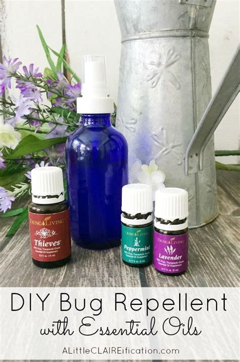 diy bed bug spray how to make your own bug spray this diy insect repellent