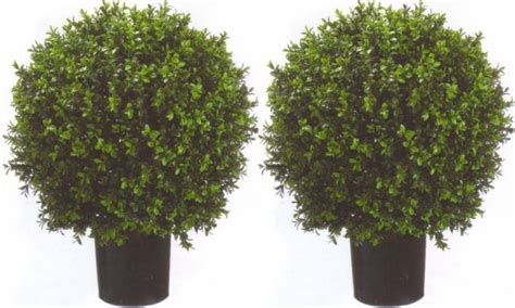 2 artificial 24 quot outdoor uv boxwood topiary tree plant