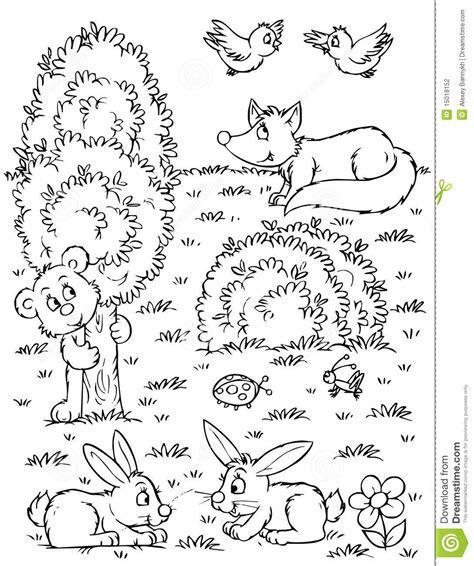 Fox, Bear, Hares And Birds Stock Photography   Image: 15018152