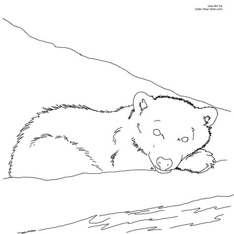 coloring page bear cub free coloring pages of mother and polar bear cub