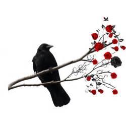 raven rose polyvore