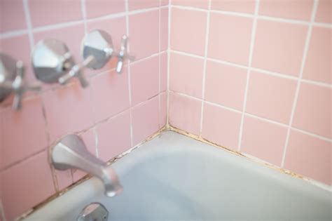 pink mold bathroom pink mold in bathroom 28 images best cleaner for pink