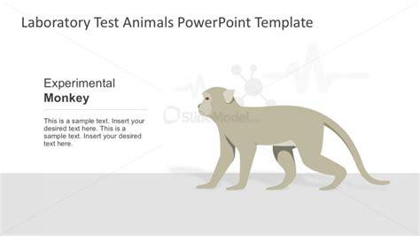 lab experimental monkey for powerpoint slidemodel