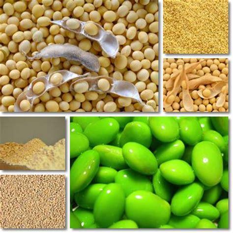 a cosa serve la lecitina vitamine proteine