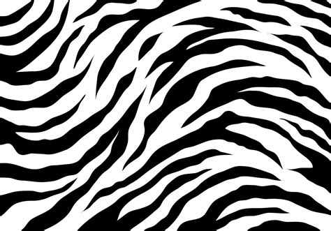 black white stripe print pattern white tiger stripes free vector stock