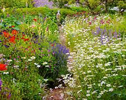 Rustic Backyards English Vs French Vs Japanese An International Garden