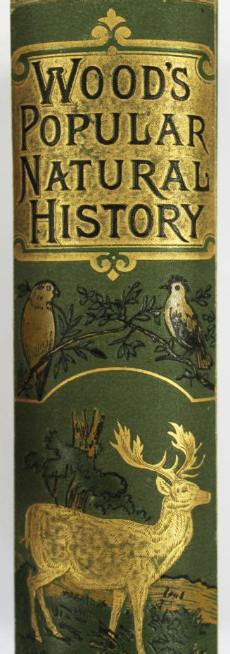 cover design rare books special collections