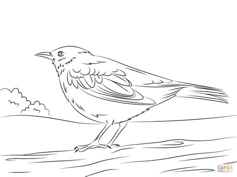black bird coloring page printable bird colouring pages for kids black bird