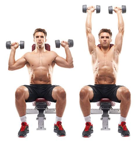 seated dumbbell bench press 7 best exercises to lose weight at home easily