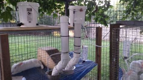 Rabbit Automatic Feeder automatic rabbit feeders each feeder holds 16 cups of rabbit feed that is what the