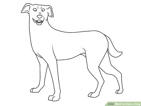 pictures of dogs to draw dogs pictures to draw wallpaper sportstle