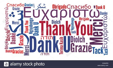 traduzione best of you thank you word in different languages stock photo royalty