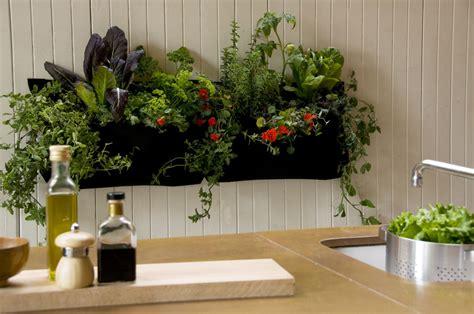 indoor herb garden wall images