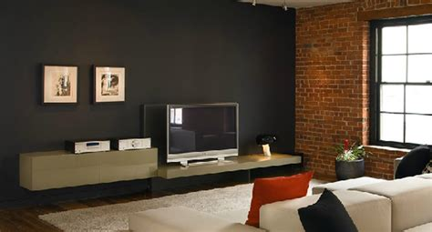 contemporary and sophisticated media center design of