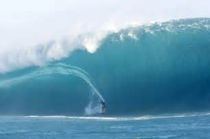 Blind Shark Facts Surfers Parts Of Surfing Wave