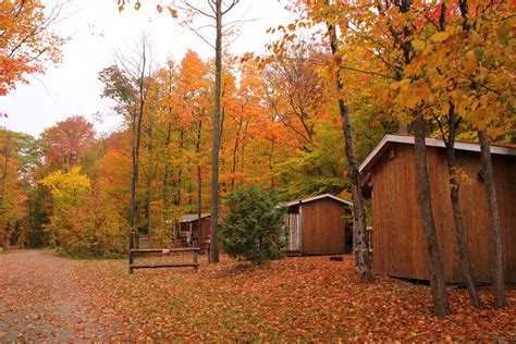 in fall 3 cing cabins in fall gordon s park