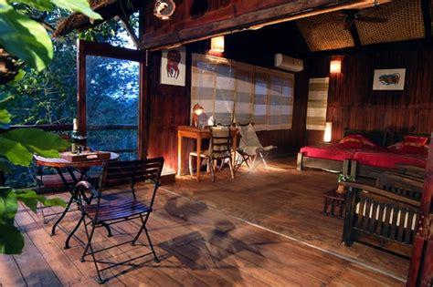 room photo 1536784 treehouse hotel