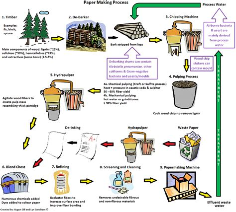Paper Process Diagram - klebsiella pneumonia bacteria found in pulp paper biosolids