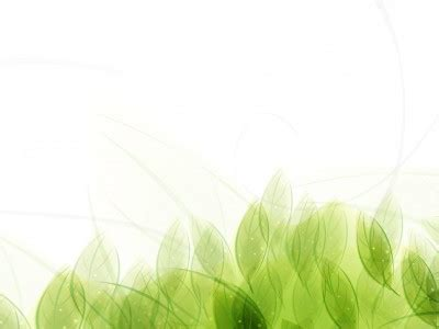 powerpoint design leaf leaves powerpoint template free green leaves pattern