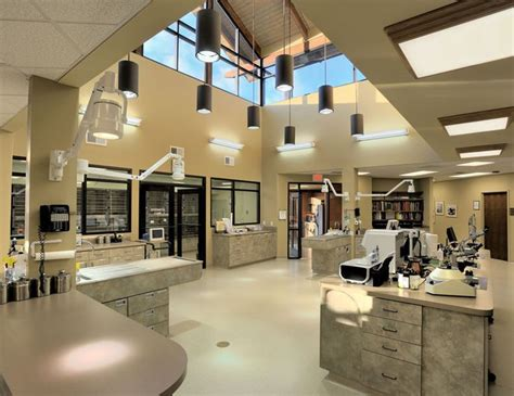 13 best pharmacies veterinary hospital design images on