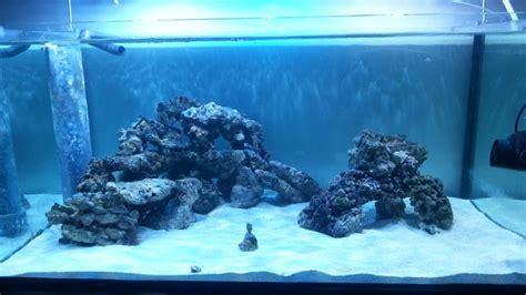 reef tank aquascaping aquascaping aquatics pinterest aquascaping