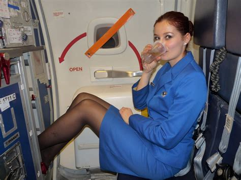 image gallery real stewardess
